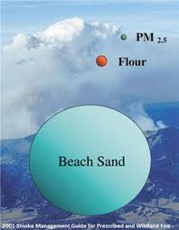 Particulate Matter Size Comparison Chart